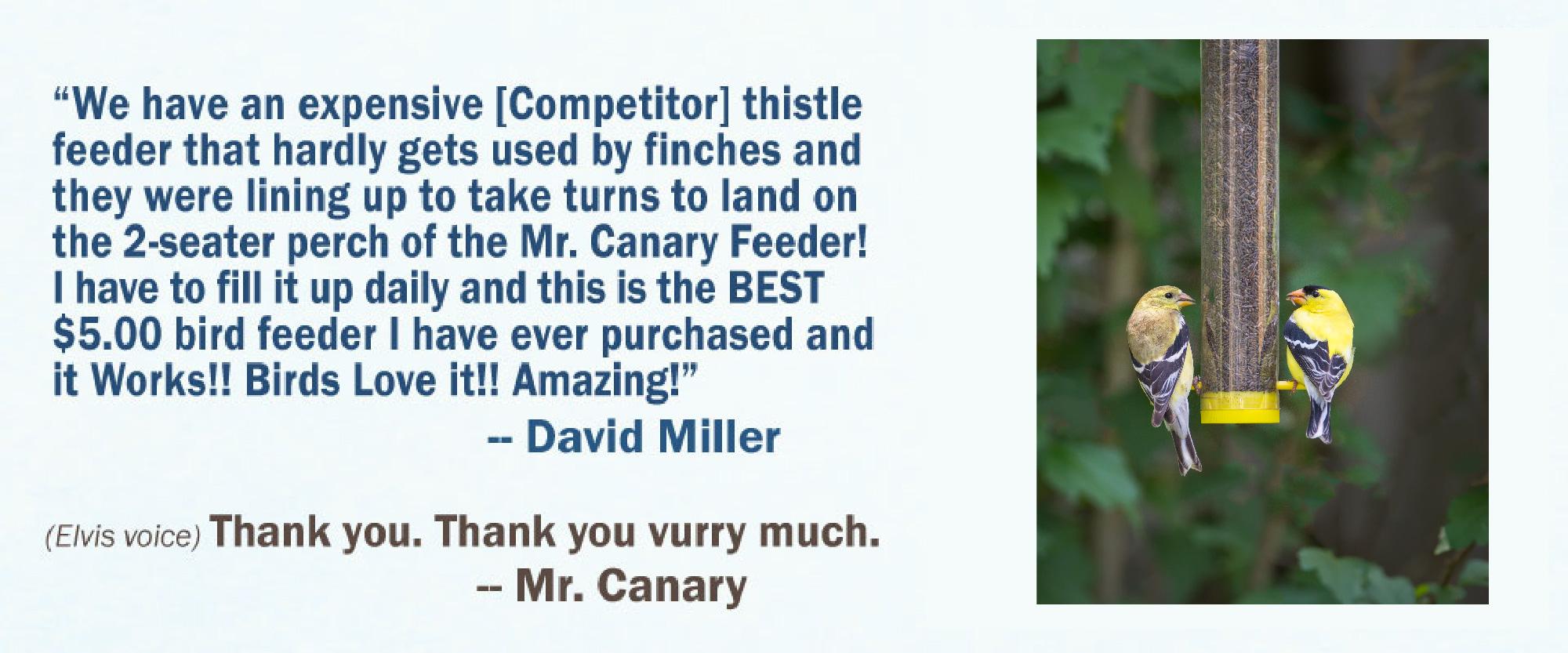 David-Miller8
