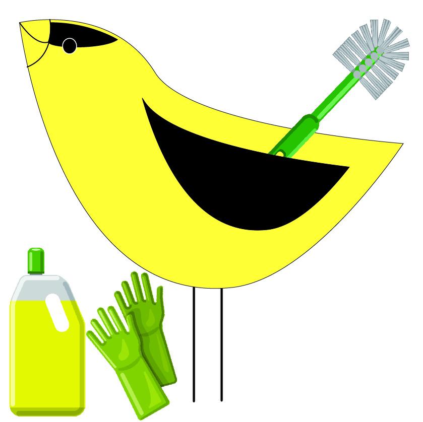 Bird Feeder Cleanliness